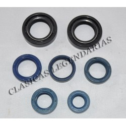 Kit retenes motor Enduro 250 H6 ref.099254006
