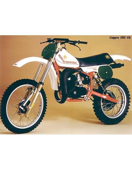 Cappra 250 VG 1981